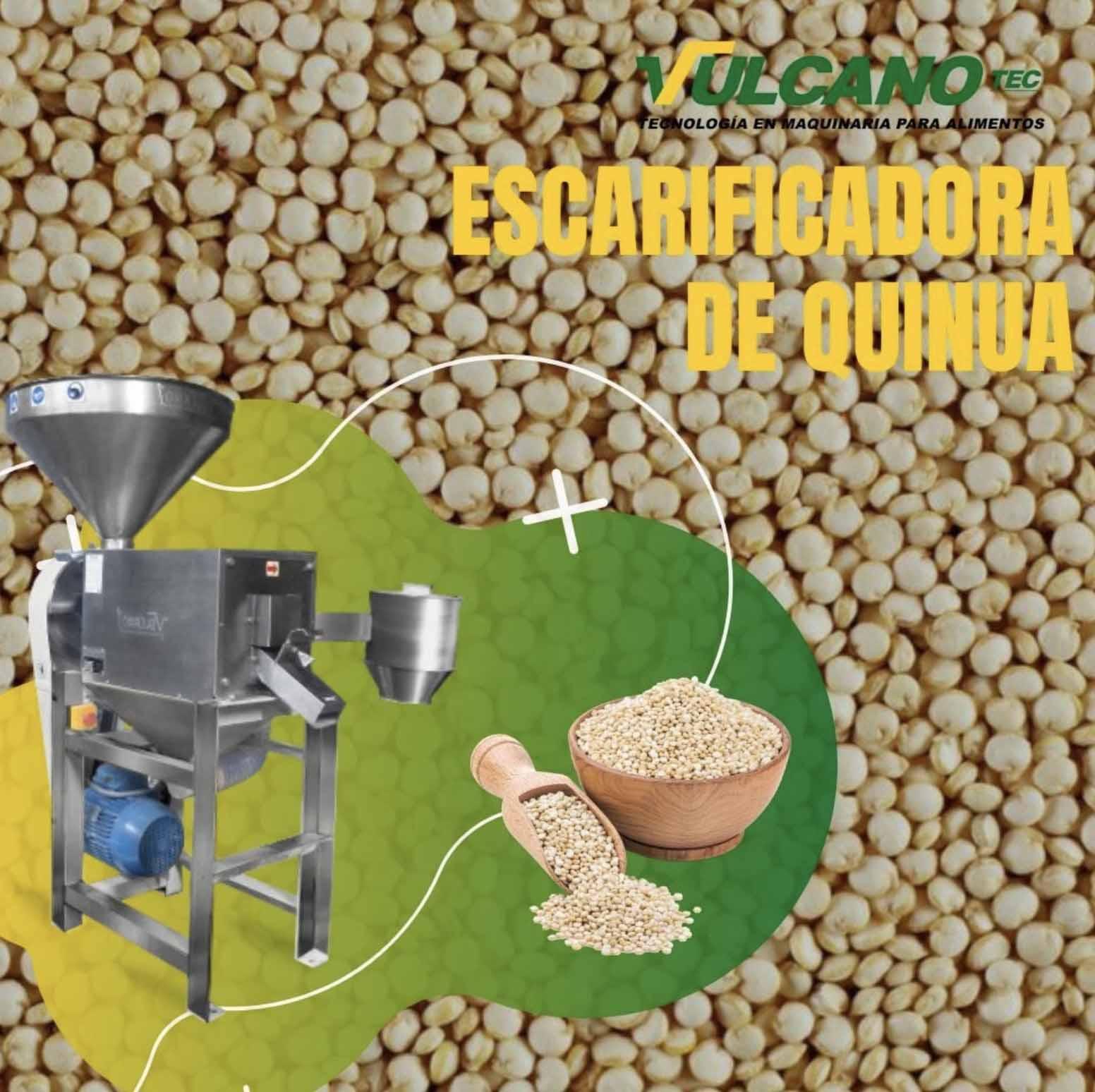 Quinoa processing lines scarifier