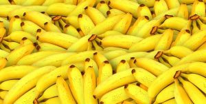 The best fruit processing lines