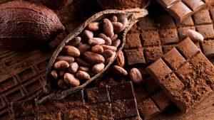 Do you know the origin of cocoa?