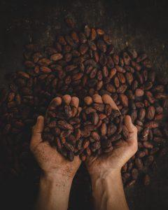 dismantling-6-cocoa-myths